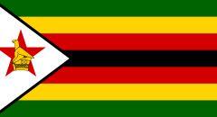 اعتقال أكثر من 100 ألف شخص في زيمبابوي لانتهاكهم قيود كورونا