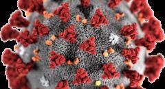 علماء الأحياء الروس يكتشفون خاصية سيئة لفيروس كورونا