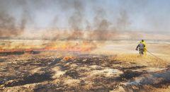 اندلاع حريق كبير في منطقة اشواك وعريه بغور الاردن