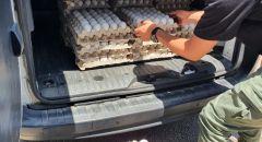ابادة حوالي 1400 بيضة تم ضبطها في سوق عكا