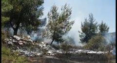 اندلاع حريق في منطقة حرشية قرب شارع رقم 1 -قرب القدس