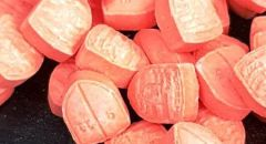 ضبط 1600 حبة من مخدرات الإكستازي والحشيش الخطيرة في الخليل