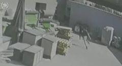 اعتقال مشتبه من قلنسوة بحيازة سلاح بعد مطاردته من قوات الشرطة