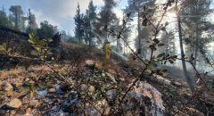 لليوم الثالث 8 طائرات تشارك في إطفاء الحرائق جبال القدس وإخلاء بلدات