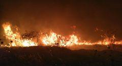 """اندلاع حريق بمنطقة مفتوحة في """"وادي الملح"""" في غور الاردن"""