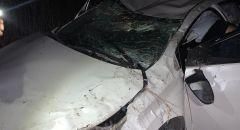 إصابة ثلاث أشخاص بحادث طرق ذاتي قرب مدخل معاوية
