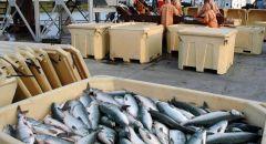حظر بيع  الأسماك حتى اشعار آخر في أعقاب كارثة التلوث البيئي
