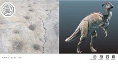 الديناصورات كانت في فلسطين: باحث من جامعة القدس يكتشف آثار لأقدام ديناصورات عاشبة سكنت فلسطين