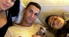 """بعد أن دهسته سيارة في تورينو.. رونالدو يرسل قطه """"النادر"""" للعلاج في إسبانيا بطائرة خاصة"""