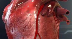 للوقاية من النوبات القلبية والجلطات الدماغية ,, اليكم قائمة بمواد غذائبة !