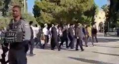 مستوطنون يقتحمون الاقصى واعتداءات الشرطة على المصلين واعتقال حارس المسجد