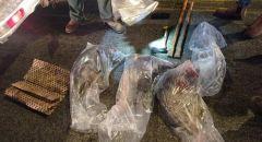 الشرطة تعتقل شابين من مدينة عرابة بشبهة الصيد غير القانوني
