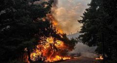 واشنطن تدعو الحكومة السورية لاتخاذ إجراءات لإنقاذ الأرواح بسبب الحرائق