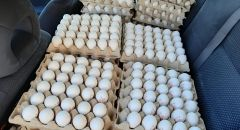 الشرطة : ضبط 100 كرتونة بيض تم نقلها  بظروف غير مناسبة  في  موديعين عيليت