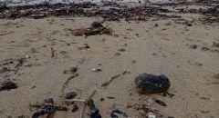 بسبب التلوّث في شواطئ البلاد وزارات اسرائيلية تحذر من السباحة بالشواطئ في جميع انحاء البلاد
