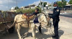 الشرطة تلقي القبض على مشتبه مقيم غير شرعي في جت من سكان طول كرم يقود عربة ويجرها حمار مصاب