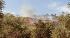 اندلاع حريق هائل في نوف هغليل