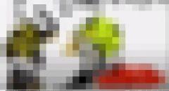 النائب أيمن عودة يطالب جوجل بحذف أغاني لا-فاميليا المسيئة للرسول الكريم