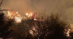 أم الفحم: اندلاع حريق في منطقة حرشية الليلة الماضية