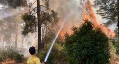 تجدد حريق جبال القدس: قائد الإطفاء والإنقاذ يوعز بتجنيد طواقم السلطة الكاملة