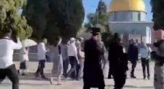 وسط انتشار مكثّف لقوات الشرطة اقتحامات المستوطنين للمسجد الأقصى مستمرة