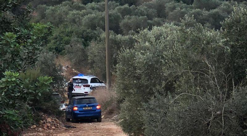 دير حنا: العثور على جثة شاب بين كروم زيتون توفي بظروف تراجيدية