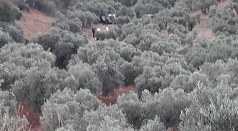 عيلبون: مصرع ابراهيم صليبا سرور في حادث انقلاب  جرار زراعي