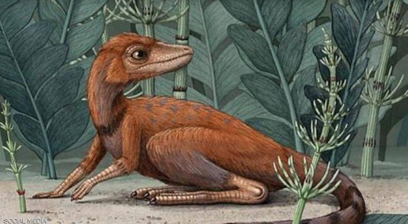"""""""القاتل الصغير"""".. اكتشاف ديناصور مذهل بحجم """"الهاتف المحمول"""""""